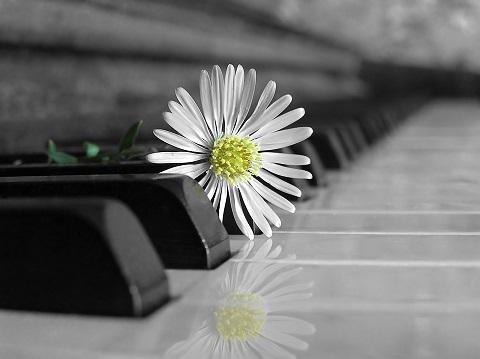 Музыка для души - 5